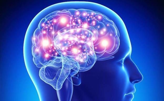 Cerebro-tecnología, ¿matrimonio a la vista?
